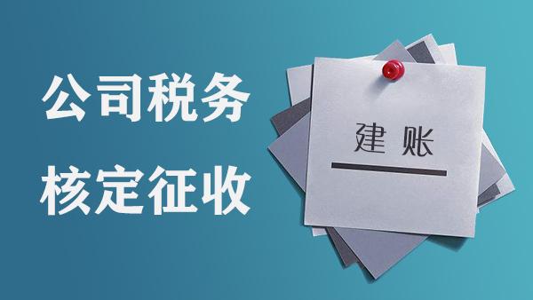 广西钦州公司税务核定征收之后,能否只报税不用做账?